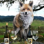 Fox 2015 1